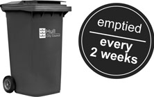 Your black bin will be emptied every two weeks