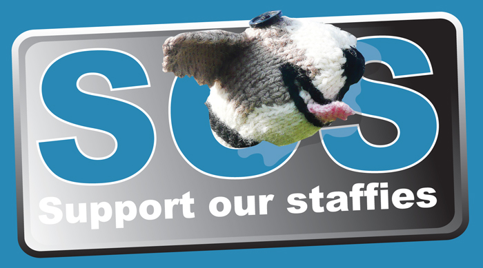 Support our Staffies