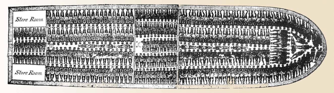 hull city council william wilberforce : slave ship diagram - findchart.co